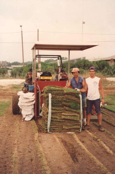 1993 Estágio em produção de grama esmeralda